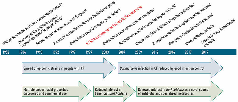 A timeline of key events in our understanding of Burkholderia bacteria as both pathogens and beneficial bacteria.