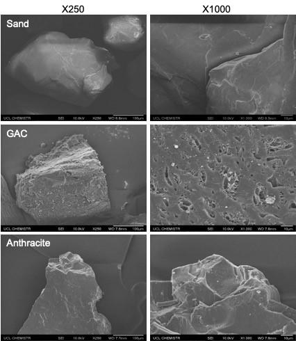 Figure 2. Scanning electron micrographs of the surface of sand, GAC and anthracite.