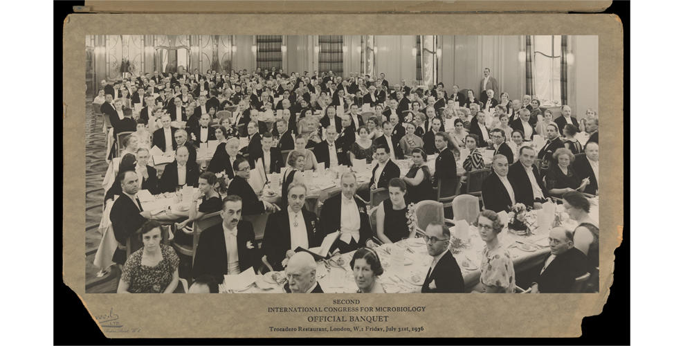 Delegates at the official banquet of the Second International Congress of Microbiology held on 31 July 1936 at the Trocadero Restaurant, London, UK.