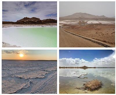 Fig. 2. Examples of terrestrial analogue sites. Top left, Qaidam, China; top right, Pedra de Lume, Cape Verde; bottom left, Lake Tirez, Spain; bottom right, Qaidam, China.