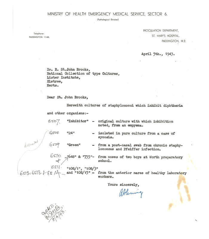 Letter regarding the deposit of 8 strains of staphylococci, dated April 5th 1943.