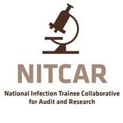 NITCAR logo