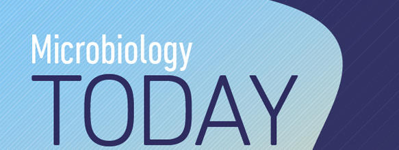 Microbiology Today August cover